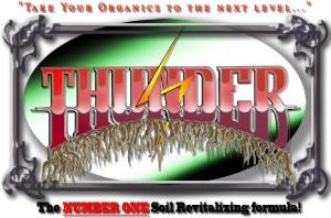 thunderheader4web